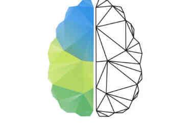Comment agit le CBD sur le cerveau ?